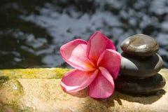 Spa concept zen basalt stones Royalty Free Stock Images