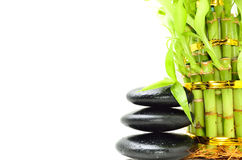 Spa concept zen. Basalt stones with bamboo Royalty Free Stock Photo