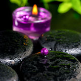 Spa concept of zen basalt stones with bead, drops, lilac candle Royalty Free Stock Photo