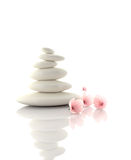 Spa concept zen basalt stones with cherry flowers Stock Photo