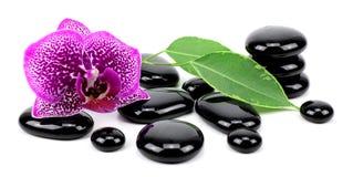 Spa concept zen basalt stones! Royalty Free Stock Photography