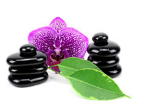 Spa concept zen basalt stones.. Royalty Free Stock Photo