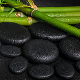 Spa concept of zen basalt stones and natural bamboo with drops,. Closeup royalty free stock images