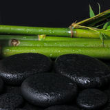 Spa concept of zen basalt stones and natural bamboo with drops,. Closeup stock image