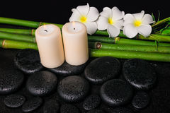 Spa concept of zen basalt stones, three white flower frangipani, candles and natural bamboo with dew, closeup royalty free stock images