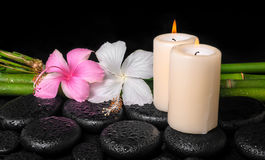 Spa concept of zen basalt stones, white and pink hibiscus flower Stock Image