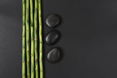 Spa concept with zen stones and bamboo. Spa concept with black basalt massage stones and a few stems of Lucky bamboo on a black background; with space for text stock image