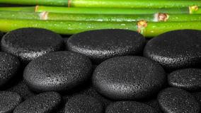 Spa concept of zen  stones and bamboo with dew, panorama Stock Photos