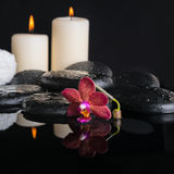 spa concept of zen stones with drops, purple orchid Royalty Free Stock Photo