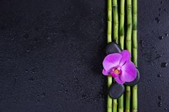 Spa concept with zen stones, orchid flower and bamboo. Spa concept with black basalt massage stones, pink orchid flower and a few stems of Lucky bamboo covered stock photos