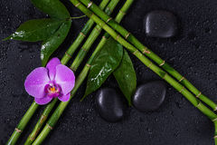 Spa concept with zen stones, orchid flower and bamboo. Spa concept with black basalt massage stones, pink orchid flower and a few stems of Lucky bamboo covered royalty free stock photo