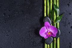 Spa concept with zen stones, orchid flower and bamboo. Spa concept with black basalt massage stones, pink orchid flower and a few stems of Lucky bamboo covered Stock Photo