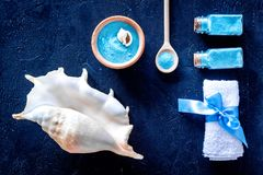Spa cosmetic set with sea salt for bath and shell on dark blue background top view. Spa cosmetic set with sea salt for bath and shell on dark blue table Stock Photography