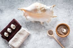 Spa cosmetic set with sea salt for bath and shell on stone background top view Royalty Free Stock Photos