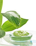 Spa cosmetics and plants Royalty Free Stock Photography