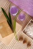 SPA cosmetics series royalty free stock photos