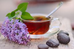 Spa. Cup of Tea. Lilac. Cup of  tea with lilac flower Stock Photography