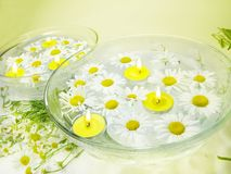 Spa with daisy flowers and yellow scented candles Royalty Free Stock Photo