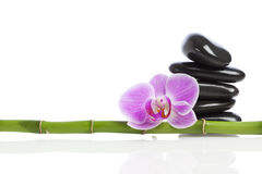 Spa Decoration. Bamboo pole, balanced spa stones and pink orchid blossom isolated on white background Royalty Free Stock Photo