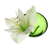 Spa decoration - amaryllis in green bowl Royalty Free Stock Photography