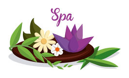Spa design Stock Images