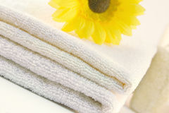 Spa detail. Collection of bath, spa, shower products Stock Photos