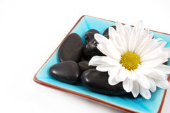 Spa Display. Dish full of spa rocks and a big daisy stock photography