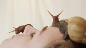 Spa Dos caracoles grandes en la cara La mujer joven en el balneario recibe un masaje facial con los caracoles Achatina Los caraco almacen de video