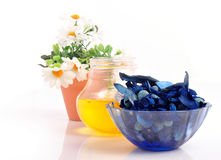 Spa elements Royalty Free Stock Image