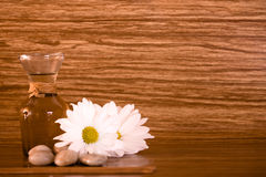 Spa elements on wood background. Stones and flowers Stock Photos