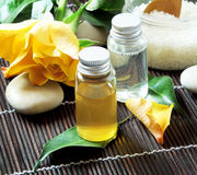 Spa Essences Bottles Royalty Free Stock Photography