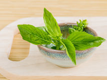 Spa Essential Oil - Natural Spas Ingredients. For aromatherapy Royalty Free Stock Photography