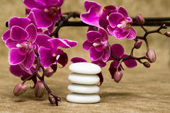 Spa essentials. (pyramid of stones with purple orchids Stock Image