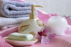 Spa essentials Royalty Free Stock Photos