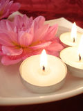 Spa essentials. (candles and pink flowers on water Royalty Free Stock Image