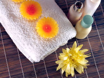 Spa Essentials Royalty Free Stock Photo