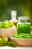 Spa essentials - green aromatherapy Royalty Free Stock Photos