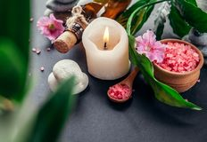 Spa essentials including candle, salt, stones, oil and green leaves Stock Image