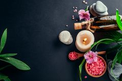 Spa essentials including candle, salt, stones, oil and green leaves Royalty Free Stock Photography