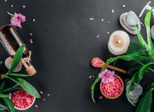 Spa essentials including candle, salt, stones, oil and green leaves royalty free stock image
