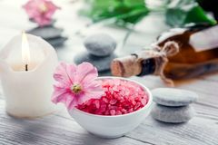 Spa essentials including candle, salt, stones, oil and green leaves. On white background Stock Images