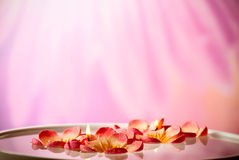 Spa floating candles royalty free stock image