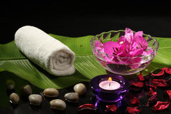 Spa     with   flower. Spa     with   leafs  ,   stones   and   flower  on     white     or       black     background Royalty Free Stock Photos