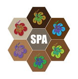 Spa Flower Stock Photo
