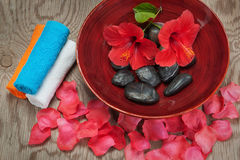 Spa flower arrangement. On a wooden tecture Stock Photography