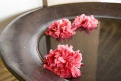 Spa flower bowl. A wooden bowl with pink flowers royalty free stock images