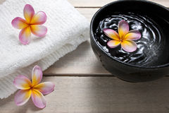 Spa Flower Water Bowl Royalty Free Stock Image