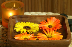 Spa flowers stock photography