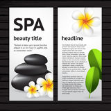 Spa flyer design template. Vector modern spa flyer design template with realistic frangipani flower, green leaves and black Stock Image