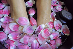 Spa foot massage health woman flower relax therapy asian. Culture royalty free stock photo